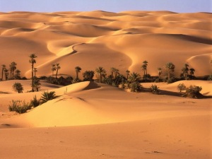 http://1.bp.blogspot.com/-2fHFu_jZtDA/TxM6fshnEZI/AAAAAAAAB6I/5HcijhBlus4/s1600/Desert_Oasis%2C_Libyan_Desert%2C_Libya.jpg