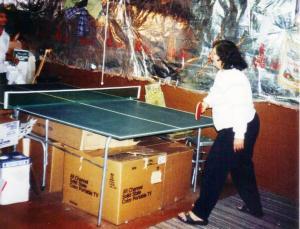 Table Tennis Champion 1.1