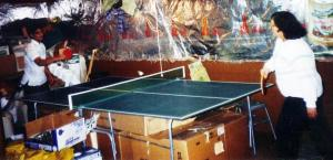 Table Tennis Champion 2.1